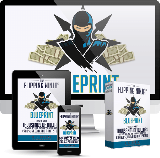 Blueprint 20 the flipping ninja experience the most excitement money and freedom youve ever had malvernweather Choice Image